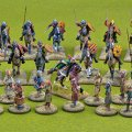Photo of Spanish Starter Warband (CCSB07)