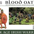 Photo of DARK AGE IRISH WARRIORS (WAABO001)