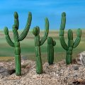 Photo of Saguero Cacti (PMX 10)