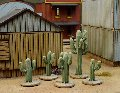 Photo of Dead Man's Hand Cacti (DMH-CAC)