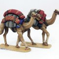 Photo of Baggage Camels (SSC23)