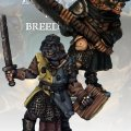Photo of Gnoll Knight & Templar (FGV219)