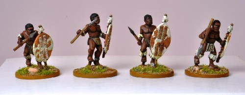 Matabele Warriors II (unmarried)