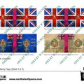 Photo of British 1st Division Infantry Flags (Sheet 3 of 3) (BRC003)
