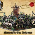 Photo of Mountain Orc Infantry (O-705)